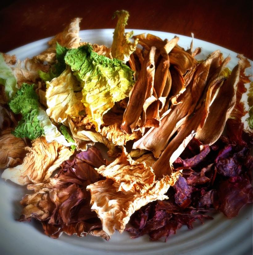 Cabbage Rolls3